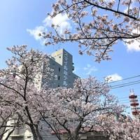 【タイムセール・素泊り】WEB予約限定!水戸駅南口から徒歩3分!ビジネス観光に便利で快適!