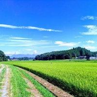 農業体験【稲作本店(FARM1739)】1日2組限定〜黒毛和牛ステーキ ※メイン料理以外は食べ放題