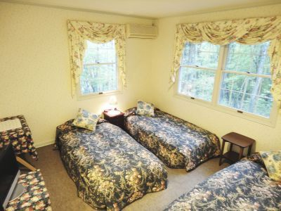 Standard Mountain View Twin Room