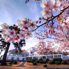 <早春の川奈>桜を眺めながらティータイム♪(夕朝食付き)