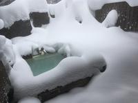 【手ぶらでスキー&スノーボード♪】〜信州牛の焦がし味噌焼きと雪に囲まれた乳白色の貸切露天風呂を満喫〜