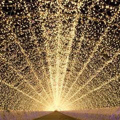 【お正月期間限定】☆よろこびフルコースプラン☆ ♪ ナガシマスパーランド・なばなの里もすぐ近く♪