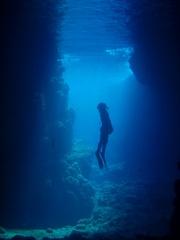 【ネット限定】ドライスーツで寒くない!青の洞窟メニュー特典付き宿泊プラン