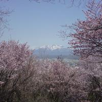 《3月〜5月宿泊限定》◎2食付◎春の野花が綺麗な季節にのんびりSTAY■夕食時グラスワインの特典付
