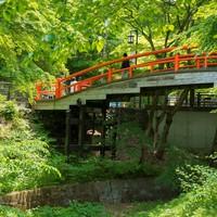 【緑あふれる新緑の河鹿橋】梅酒OR日本酒選べる「利き酒セット」付<上州牛すき焼き>
