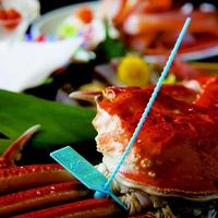 【加能ガニ1杯付】 石川県タグ付きブランド蟹をお好みの調理法で味わおう♪