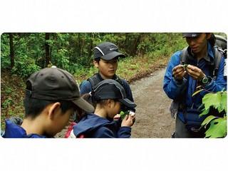 ◆ネイチャーガイドウォークプラン◆【八ヶ岳アウトドア体験】 自然を楽しむネイチャーガイド♪
