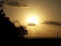 【禁煙】【和室4畳半】水平線から昇る朝陽の見えるお部屋