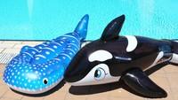 【夏休みファミリー】お子様歓迎!水遊びグッズ&手持ち花火の特典付♪海水浴と温泉の家族旅行/彩り会席