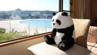 赤ちゃんパンダ誕生記念!アドベンチャーワールドオリジナルぬいぐるみ付き(※入園券なし)/華会席