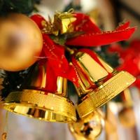 【12月限定◆クリスマスにお薦め】デザートプレート付き【クラシカル/食事処】