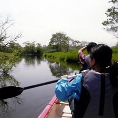 ◆カヌーツアー4時間コース◆釧路湿原の大自然を満喫≪2食付き≫