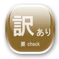 禁煙【訳あり】1階シングル【朝食ブッフェサービス中】