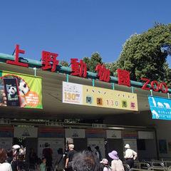 ★パンダに会いたい★  《上野動物園入場券付》   朝食サービス中プラン