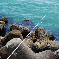 こんなの釣れちゃった★子どもの笑顔と伊良湖の魚で思い出づくり■海釣りセット付プラン