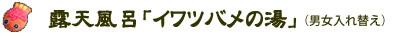 露天風呂「イワツバメの湯」(男女入替)