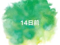 《〜14日前》早期予約でお得◆<朝食&コーヒー無料>