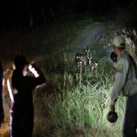 Nature Loves Karuizawa 〜選べる自然体験〜(イーストコテージ)