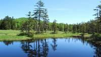 【天空の大自然へ】浮島湿原ガイド付き宿泊プラン(夕朝食付)