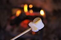 お部屋の暖炉で焼きマシュマロ♪ 夕・朝食付きプラン☆