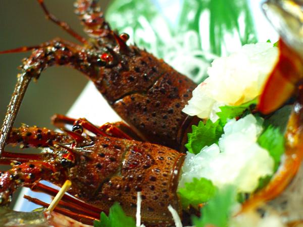 【お部屋食】国登録有形文化財のお部屋:伊勢海老・金目鯛姿煮・アワビより1つ選択☆2食付