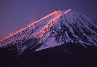 御到着が遅くなる方にお勧め 『朝食付プラン』  ☆春は富士山と桜☆