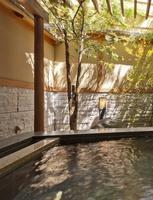 ◆カップル・夫婦の方々絶賛の貸切り露天風呂が無料◆『ふたり旅プラン』  ☆春は富士山と桜☆