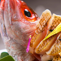 【春限定】★のどぐろ&舟盛★巷で噂の高級魚『のどぐろ』をあぶりで♪北陸の美味を味わう春爛漫会席♪