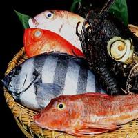 【しあわせ夢みさき計画 (*´∀`*)】◆旬のお刺身☆た〜っぷりプラン◆一番ネタを毎朝漁港から仕入!