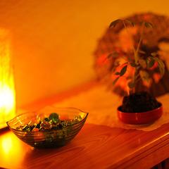 【部屋食or個室食事処確約】瀧の屋・花風プラン♪「0才〜2才 お食事・寝具等無しで無料」