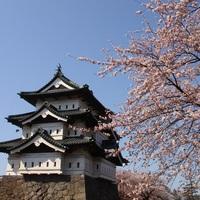 <<春爛漫★桜旅>>東北屈指の桜の名所「弘前城」は車で60分♪ご夕食は人気の小町コース♪