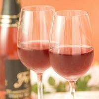 3月23日(金)限定「世界のワインと料理のハーモニー」特別宿泊プラン(1泊朝食+ワインパーティー)