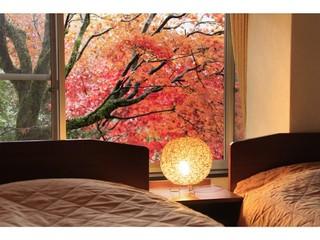 ベッドでゆったり!畳でごろりん!≪のんびり湯治プラン≫※特別和洋室 洋(ツイン)+和(8畳)