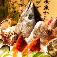 【季の座一押し】鮮魚は地元で買い付け!お造りが選べるプリフィックス会席プラン/ホテル本館宿泊