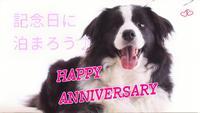 ☆選べるケーキ付き記念日プラン☆愛犬と一緒に大切な日をお祝い