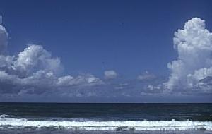 【当館人気】『海大好き!!』お部屋&お風呂海ビュー 特選プラン』