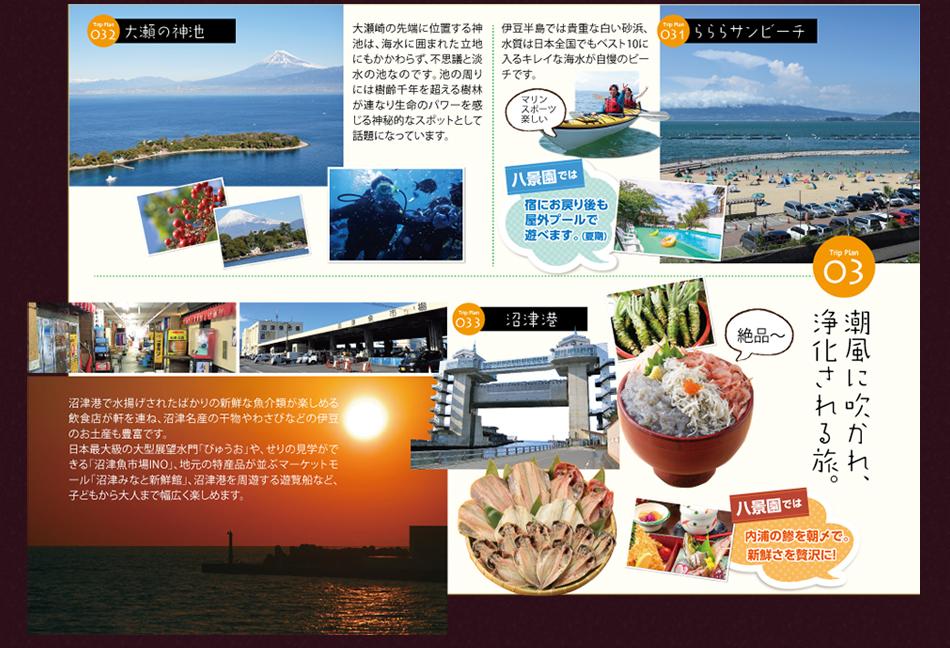 観光情報3