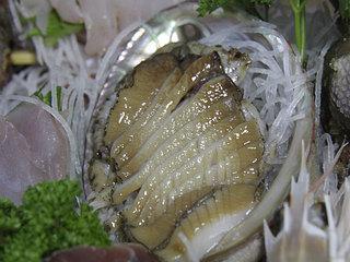 ぷりっと甘い!伊勢海老・あわび・サザエ・地魚の舟盛りです♪お刺身付きプラン