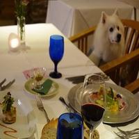 【楽天スーパーSALE】12%OFF!ペットと一緒♪1泊2食付き&ガーデンスパ