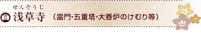 浅草寺(雷門・五重塔・大香炉のけむり等)
