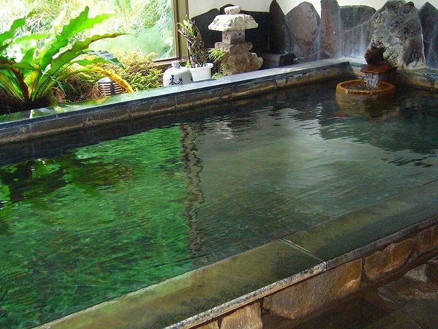 霧島温泉 いで湯の宿 霧島花紫 image