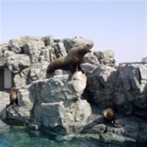 【ファミリー】動物たちとふれあえる水族館♪「うみたまご」チケット付プラン(朝食付)【禁煙】