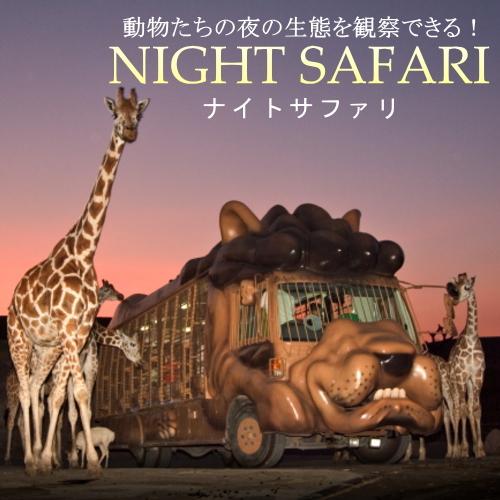 【動物たちの夜の世界に大接近!】ないとつあー☆サファリプラン<1泊2食付>