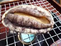 【夏限定・ウニ満喫☆】 かむいプラン (2食付) +鮑踊焼