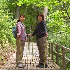 【曜日限定】☆散策後にご宿泊☆ノルディックウォーキング!白神の森遊山道宿泊パック!