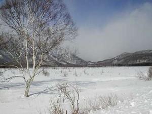 地吹雪体験!冬の奥日光半日バスツアーぷらん