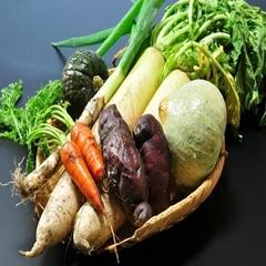 季節の野菜たっぷり地産地消ヘルシープラン