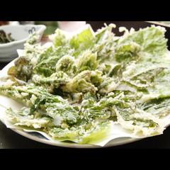 【春の山菜】ぽかぽか陽気*季節のお料理を満喫♪