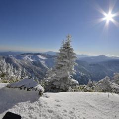 【横手山・渋峠限定リフト券付】パウダースノーの志賀高原でお得にスキーを満喫♪