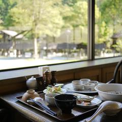 【熊野古道ウォーク】古道散策に便利!ナチュラル水付き&無料送迎で気軽にハイキング♪